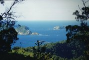 View from Raoul Island, Kermadec Islands. Photo / File