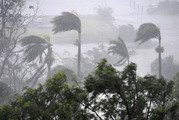 Strong winds and rain lashed Airlie Beach yesterday as Cyclone Debbie hit. Photo / AAP