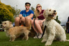 Mike Williamson and Kate Waterhouse with their three-legged dog Ollie (right) at Doggy Day out. Photo/Ben Fraser