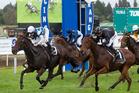 WINNING STYLE: All Roads and jockey Kelly McCulloch win the Windsor Park Stud Japan New Zealand International Trophy Race on Saturday. PHOTO: BEN FRASER