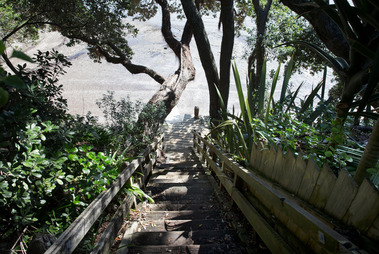 There are already stairs down to the secluded beach. Photo / Nick Reed