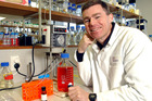 Malaghan Institute director Professor Graham Le Gros has welcomed a new cancer-focused biotech venture between Malaghan and China-based Hunan Zhaotai Medical Group. Photo / File