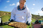 Neil Mossop continues the honey business started by his father, and which now involves his own children.Photo/Supplied