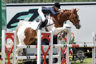 Hastings' own Phoebe Burns will take part in the 2017 Equestrian Sports New Zealand Jumping Series tomorrow. Photo / File