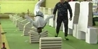Watch: Teen breaks 111 concrete slabs using his head