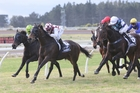 Illuminati's out to add black type at Ellerslie today. Photo / Race Images