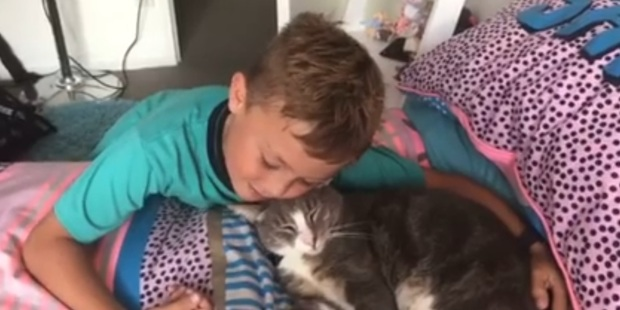Jack Baillie cuddles Freddie the cat, who has returned to his family 18 months after going missing. Photo / Supplied