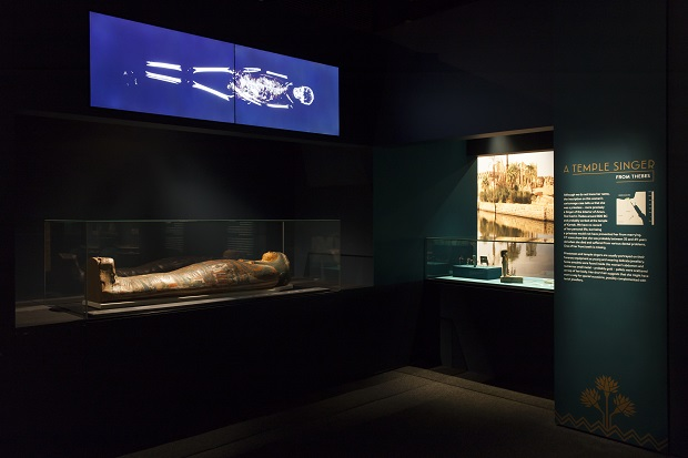The ins and outs of mummies in Sydney's Museum of Applied Arts and Sciences exhibition. Photo / Jayne Ion