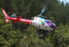 A man was flown to Tauranga Hospital after suffering critical injuries when he was struck by a falling tree. Photo/file