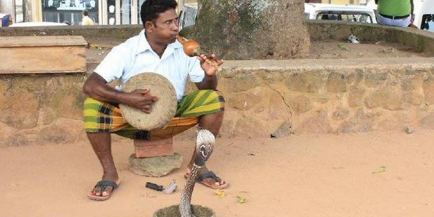 A snake charmer shows off his skills. Photo / Lou Blair
