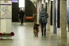 A police officer with a sniffing dog patrols Tekhnologichesky Institute subway station in St Petersburg, Russia. Photo / AP