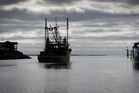The company which monitors the fishing industry is owned by its biggest lobby group. Photo / File
