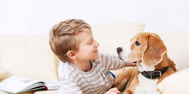 A new study had found that being exposed to family pets from a young age lower their risk of obesity and have fewer allergies. Photo / 123RF