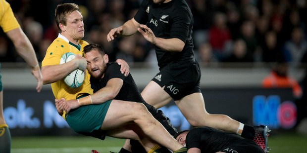 Dane Haylett-Petty in action for the Wallabies.