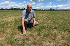 Richard Doney says using a high performance hybrid ryegrass means farmers can restore pasture productivity. Photo / Supplied