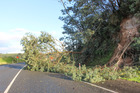 Damage on SH2 near Whakatane after Cyclone Cook. Photo/Matthew Davison
