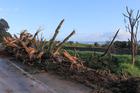 Damage on SH2 near Whakatane after Cyclone Cook. Photo / Matthew Davison