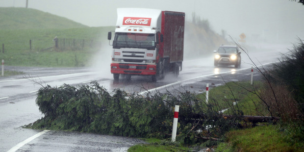 A tree down on State Highway 5 south of Rotorua this morning. Photo/Stephen Parker