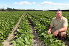 Hawke's Bay Vegetable Growers Association chairman Scott Lawson says everyone has the right to know where their food comes from.