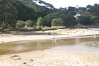 Tokerau Beach, with Perehipe Reserve behind.