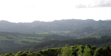 Ilchi Lee's Earth Village will be built on a Pungaere Rd property overlooking this valley next to Puketi Forest.