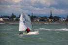 Seb Menzies, 12, of Murray's Bay SC (Auckland), has a five first placings from six qualifying races at the Optimist Nationals in Napier. PHOTO/Bob Sheldrake
