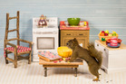 A room Nancy Rose set up for her furry models. She lures the squirrels with peanuts.