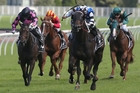 Darren Weir (centre, blue) aboard Mongolian Wolf takes out the Frank Packer Plate at Randwick on Saturday. Photo / AAP