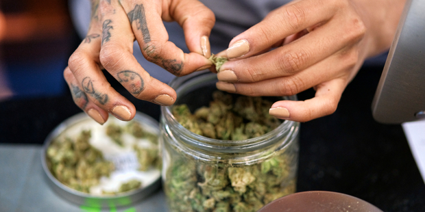 The survey suggests that marijuana use rivals cigarette smoking in the US. Photo / AP