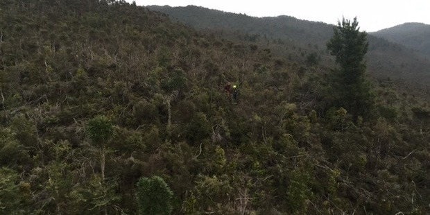 Bush east of Taupo where a hunter got lost. Picture / Supplied