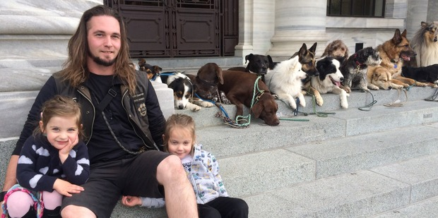 Professional dog-walker James Nepia (centre) with his children, Eva and Olly, and 12 dogs at Parliament today.