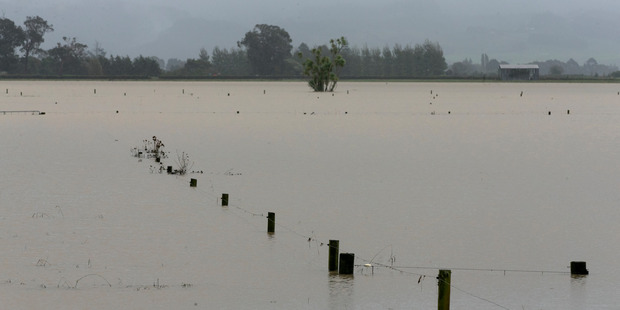 This farm was just one of many affected by the floodwaters that swept through Edgecombe and surrounding districts.