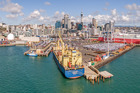 Ports of Auckland has confirmed one of its pilot boats is being investigated. Photo / File