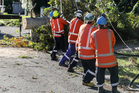 A  Unison lines crew installs a new pole and conductor in Havelock North on Saturday following Cyclone Cook. Photo/Supplied