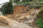 The owners of a vacant section in  Harbour View Rd are devastated after a major slip on their property. Photo/File