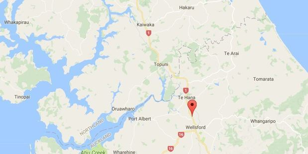 The accident on State Highway 1 midway between Kaiwaka and Wellsford, happened around 12.45pm. Photo/Google Maps