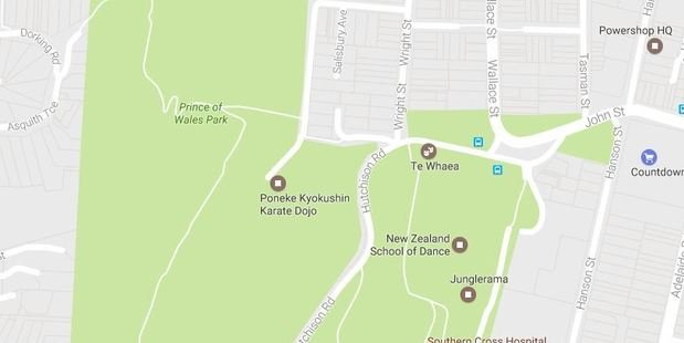 The man has appeared four times in the Prince of Wales Park to perform an indecent act in front of women. Photo/Google Maps