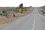 The boy apparently wanted to drive across Australia solo, a journey of almost 4000km. Photo / AP