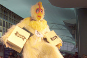 Gareth Morgan as an ambassador to Pyongyang in a chicken suit? Well why not? Photo / Martin Sykes