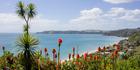 The pair put out a distress call from Onetangi Bay, off Waiheke Island. Photo / File