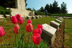 Winston Aldworth: Trips to remember