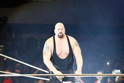 Big Show during WWE Germany Live Bremen - Road To Wrestlemania. Photo / Getty