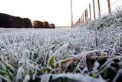 Frost and snow predicted for the South Island next week. Photo/Paul Taylor