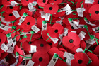 A delayed shipment from France is the reason why New Zealanders wear poppies on April 25th. Photo / Duncan Brown