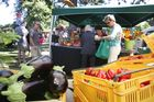 The Hawke's Bay Farmers Market is just one of many activities the Bay has to offer this weekend. PHOTO/FILE