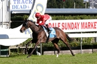 So Far Sokool takes out the Avondale Sunday Markets Fillies Classic yesterday. Photo / Trish Dunell