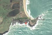 The attack happened at Curio Bay in the Catlins.