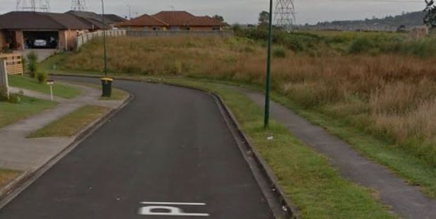 A person is in hospital after an overnight shooting in Flat Bush, South Auckland. Photo / Google Street View