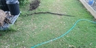 A Reddit user in Queensland shared pictures of a two-metre long snake he found in his backyard on Wednesday morning. Photo/Evadregand/Reddit