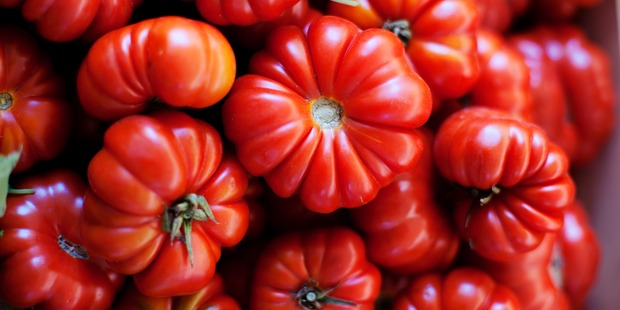 The deeper red the tomato, the more lycopene it generally contains which is thought to help reduce the incidence of many cancers. Photo / Getty